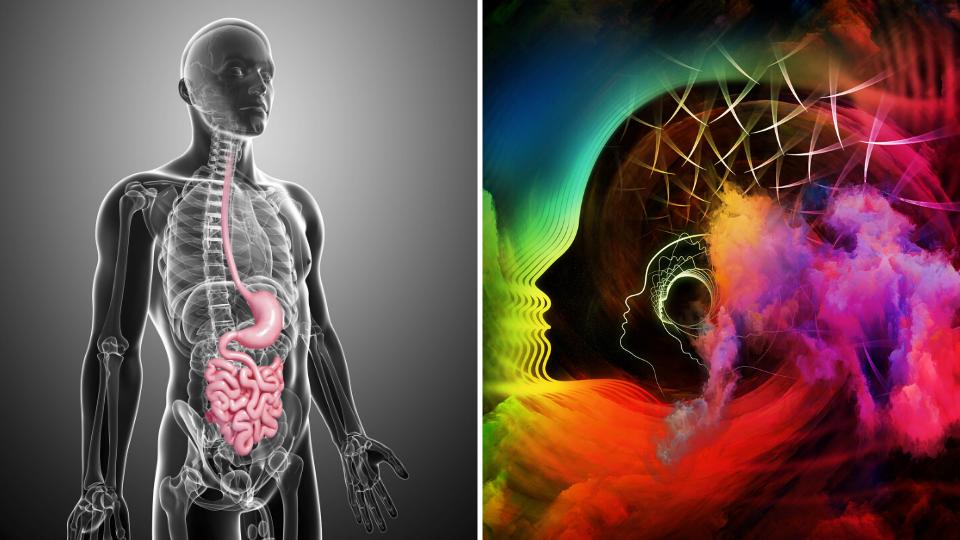 7 Powerful Gut Healing Strategies